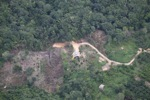 deforestation for oil palm -- sabah_2179