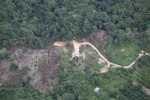 deforestation for oil palm -- sabah_2181