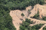 deforestation for oil palm -- sabah_2205