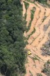 deforestation for oil palm -- sabah_2211