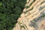 deforestation for oil palm -- sabah_2220