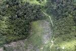 deforestation for oil palm -- sabah_2229