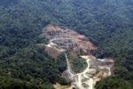 Deforestation in Borneo -- sabah_2256