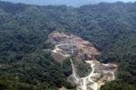 Deforestation in Borneo -- sabah_2258