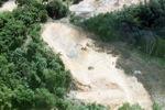 Deforestation in Borneo -- sabah_2259