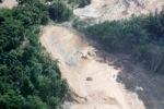 Deforestation in Borneo -- sabah_2260