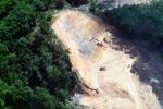 Deforestation in Borneo -- sabah_2262