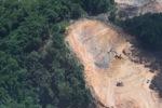 Deforestation in Borneo -- sabah_2263