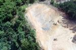 Deforestation in Borneo -- sabah_2265