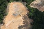 Deforestation in Borneo -- sabah_2269