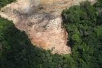 Deforestation in Borneo -- sabah_2270