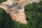 Deforestation in Borneo -- sabah_2272