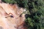 Deforestation in Borneo -- sabah_2277