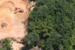 Deforestation in Borneo -- sabah_2280