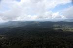 Forest in Sabah, Malaysia -- sabah_2385