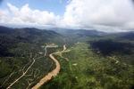 Oil palm plantation -- sabah_2404