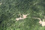 Deforestation in Borneo -- sabah_2408