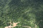 Deforestation in Borneo -- sabah_2409