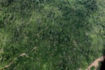 Deforestation in Borneo -- sabah_2411