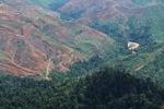 Deforestation in Borneo -- sabah_2416