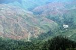 Deforestation in Borneo -- sabah_2418