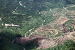 Deforestation in Borneo -- sabah_2419