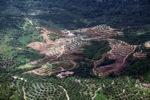 Deforestation in Borneo -- sabah_2421