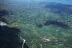 Oil palm plantation -- sabah_2422
