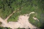 Deforestation in Borneo -- sabah_2427