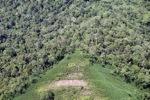 Deforestation in Borneo -- sabah_2433