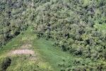 Deforestation in Borneo -- sabah_2434