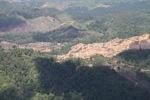 Deforestation in Borneo -- sabah_2447