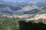 Deforestation in Borneo -- sabah_2451