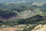 Deforestation in Borneo -- sabah_2453
