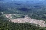 Deforestation in Borneo -- sabah_2457