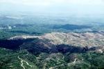 Deforestation in Borneo -- sabah_2459