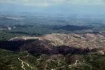 Deforestation in Borneo -- sabah_2460