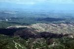 Deforestation in Borneo -- sabah_2461
