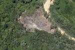 Oil palm plantation -- sabah_2467