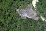 Oil palm plantation -- sabah_2468