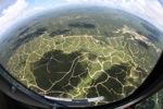 Oil palm plantation -- sabah_2469
