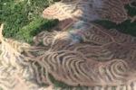 Deforestation in Borneo -- sabah_2478