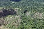 Deforestation in Borneo -- sabah_2484