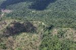 Deforestation in Borneo -- sabah_2485