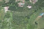 Deforestation in Borneo -- sabah_2488