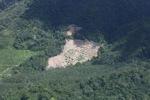 Deforestation in Borneo -- sabah_2496