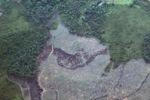 Deforestation in Borneo -- sabah_2527