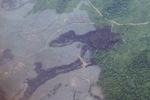 Deforestation in Borneo -- sabah_2528