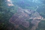 Deforestation in Borneo -- sabah_2533