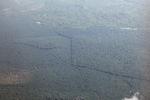 Oil palm plantation -- sabah_2537